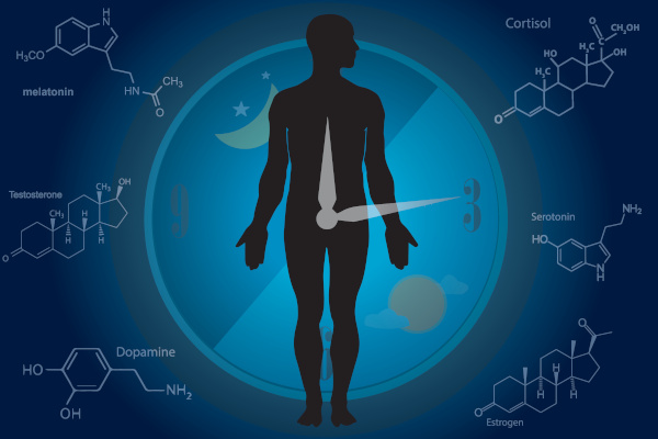 Circadian Rhythm and Medical Therapy of Cushing's Syndrome