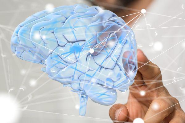 Das Management von Epilepsie