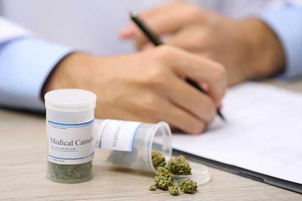 Cannabis und Cannabinoide bei Schmerz – Von der Indikation zur Therapie in der Praxis