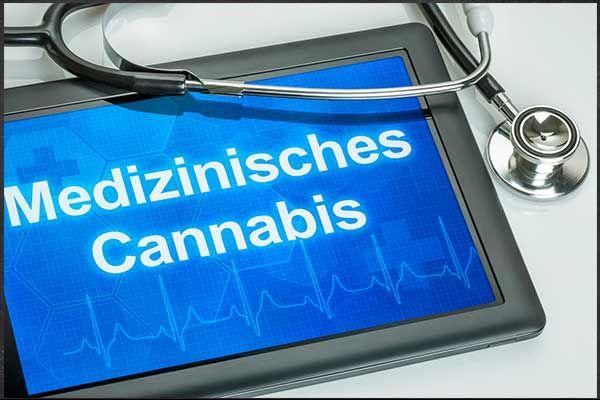 Cannabis und Cannabinoide – Einsatz bei chronischen Schmerzen