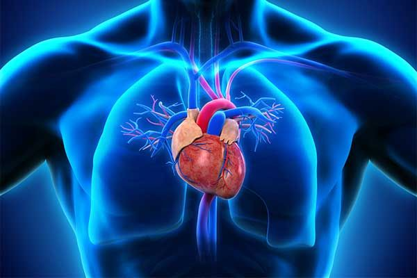 Übersicht Dyspnoe – wann ist es kardial, wann pulmonal?