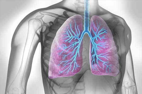 Übersicht Kardiale Komorbiditäten bei Lungenerkrankungen