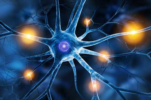 Einteilung von Epilepsien und epileptischen Anfällen: Bedeutung und Umsetzung in der Praxis