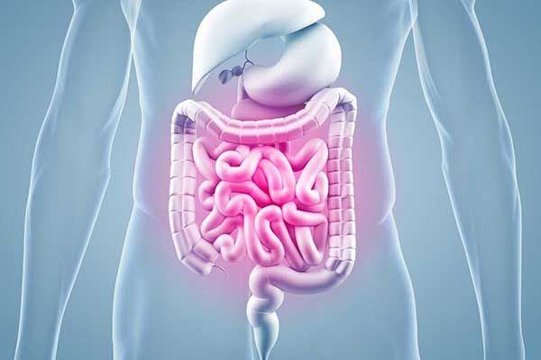 Ernährung bei CED – chronisch-entzündlichen Darmerkrankungen