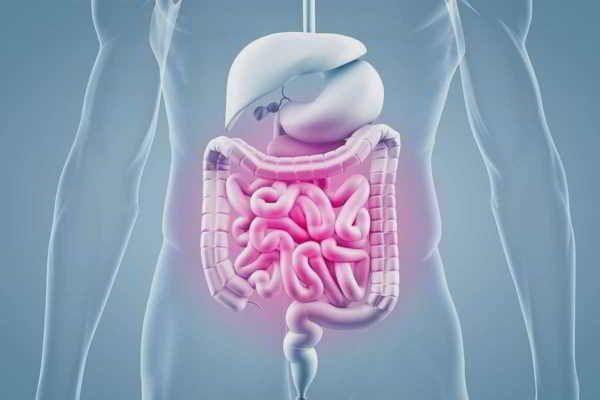 Ernährung bei chronisch-entzündlichen Darmerkrankungen (CED) (2017)