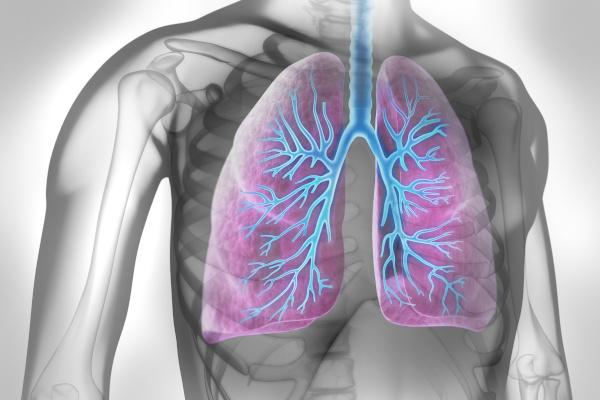 Herausforderung allergisches Asthma
