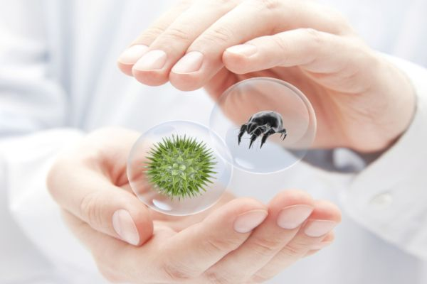 Neue Therapieoptionen in der Allergie-Immuntherapie: Praktische Tipps und Hinweise